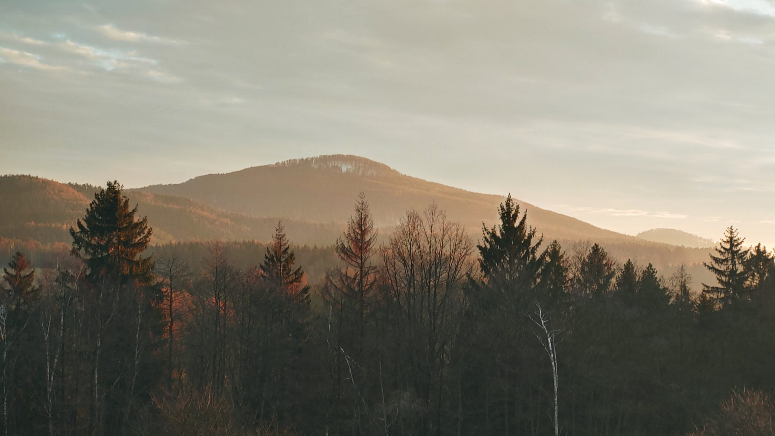 Vrch Studený, pohoří Hřebeny